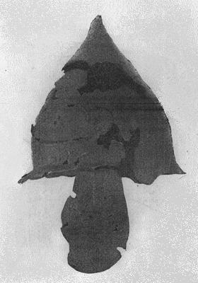 Бронзовий шолом. Станиця Ахтанизівська, ІІ – І ст. Державний Ермітаж