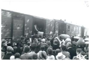 Румунське населення евакуюється з Бессарабії, червень 1940 р.